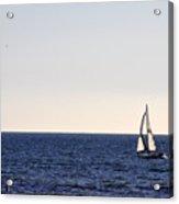 Sailing In Santa Monica II Acrylic Print