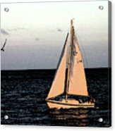 Sailing Off Of Diamond Head Acrylic Print