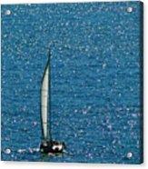 Sailing Solo Acrylic Print