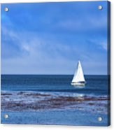 Sailing The Ocean Blue Acrylic Print