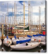 Sailoats Docked In Marina Acrylic Print by David Buffington