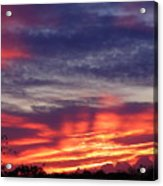 Sailor's Delight Acrylic Print