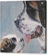 Saint Bernard Dad And Pup Acrylic Print
