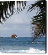 Saint Lucia Palm Tree Small Rock Caribbean Flowing Acrylic Print