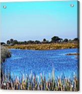 Saint Marks National Wildlife Refuge Lagoon Acrylic Print