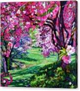 Sakura Romance Acrylic Print by David Lloyd Glover