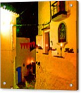 Salares By Night With Cat Acrylic Print