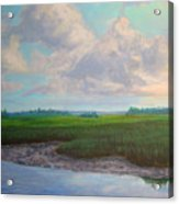 Salt Marsh Acrylic Print