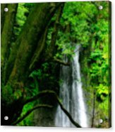 Salto Do Prego Waterfall Acrylic Print