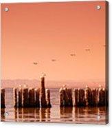 Salton Sea Acrylic Print