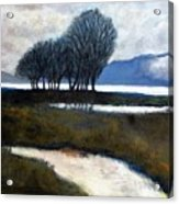 Salton Sea Trees Acrylic Print
