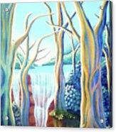 Saltwater Falls 2 Acrylic Print by Barbara Stirrup
