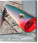 Saltwater Fishing Acrylic Print