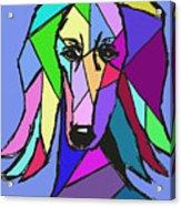 Saluki Colors Acrylic Print