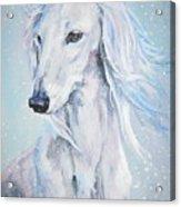 Saluki White Beauty Acrylic Print