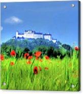 Salzburg Poppies Acrylic Print