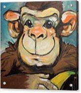 Sam The Monkey Acrylic Print