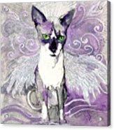 Sam The Sphinx Acrylic Print