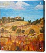 San Diego Backcountry Acrylic Print