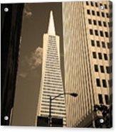 San Francisco - Transamerica Pyramid Sepia Acrylic Print