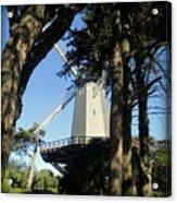San Francisco Windmills Acrylic Print