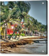 San Pedro Windy Day Acrylic Print