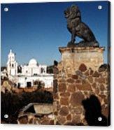 San Xavier Lions Acrylic Print