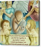 Sanctity Of Life Acrylic Print