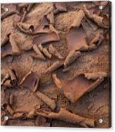 Sand And Mud Curls Acrylic Print