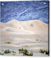 Sand Desert Usa Acrylic Print