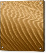 Sand Dune Mojave Desert California Acrylic Print