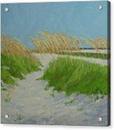 Sand Dunes  No 1 Acrylic Print