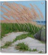 Sand Dunes  No 2 Acrylic Print