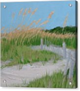 Sand Dunes No. 3 Acrylic Print