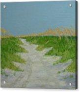 Sand Dunes No 4 Acrylic Print