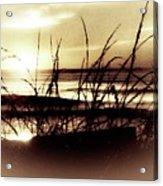 Sand Dunes Sunset Acrylic Print