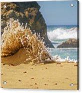 Sand Monster Acrylic Print