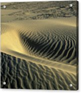 Sand Ripples Acrylic Print