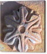 Sand Star Acrylic Print