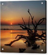 Sand Surf And Driftwood Acrylic Print