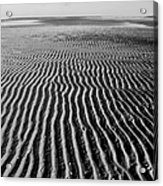 Sandbar Patterns Acrylic Print