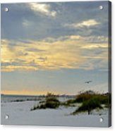 Sandy Alabama Beach Acrylic Print