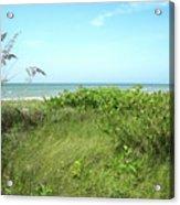 Sanibel Island Acrylic Print