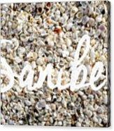 Sanibel Island Seashells Acrylic Print