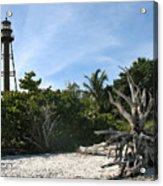 Sanibel Light And Driftwood Acrylic Print