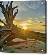 Sanibel Sunrise Acrylic Print