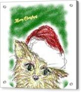 Santa Cat Acrylic Print