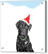 Santa Dog In The Snow Acrylic Print