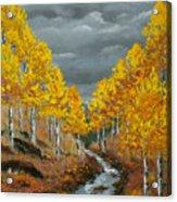Santa Fe River Aspens Acrylic Print