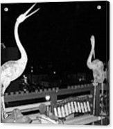 Santa Monica Birds Eye View Acrylic Print